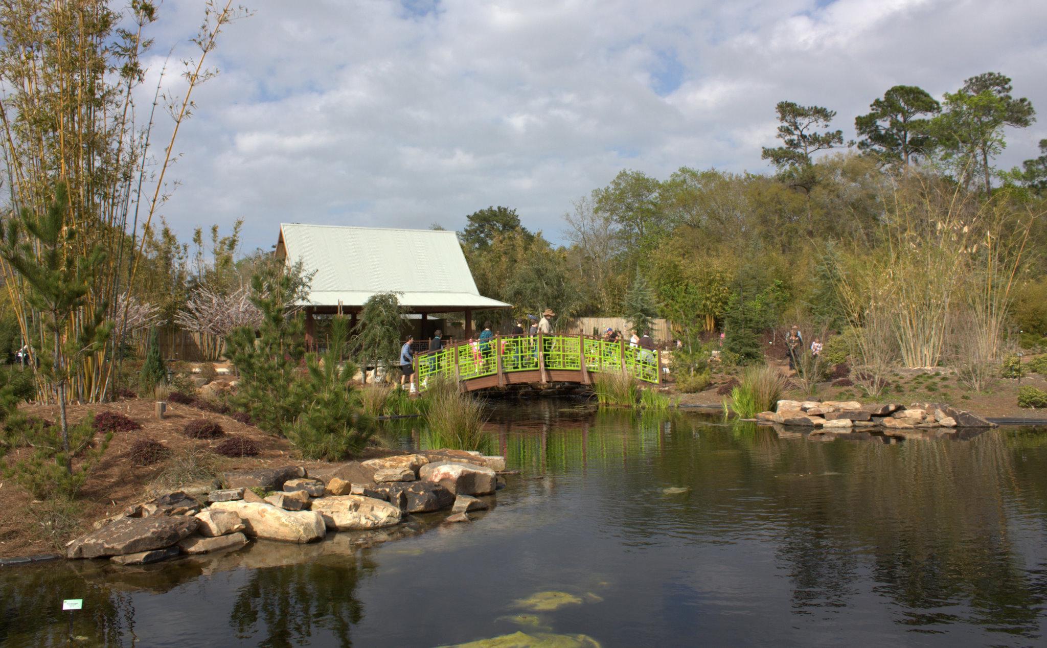 Jacksonville Zoo Asian Bamboo Garden.jpg