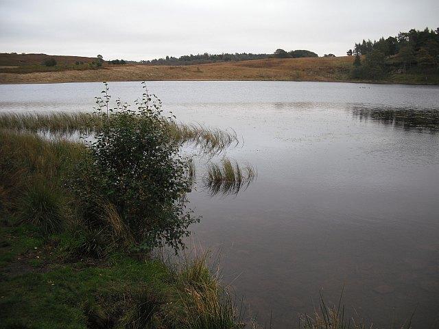 Loch Ardinning - geograph.org.uk - 1517309