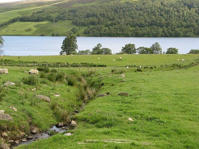 Loch Freuchie - geograph.org.uk - 1558426