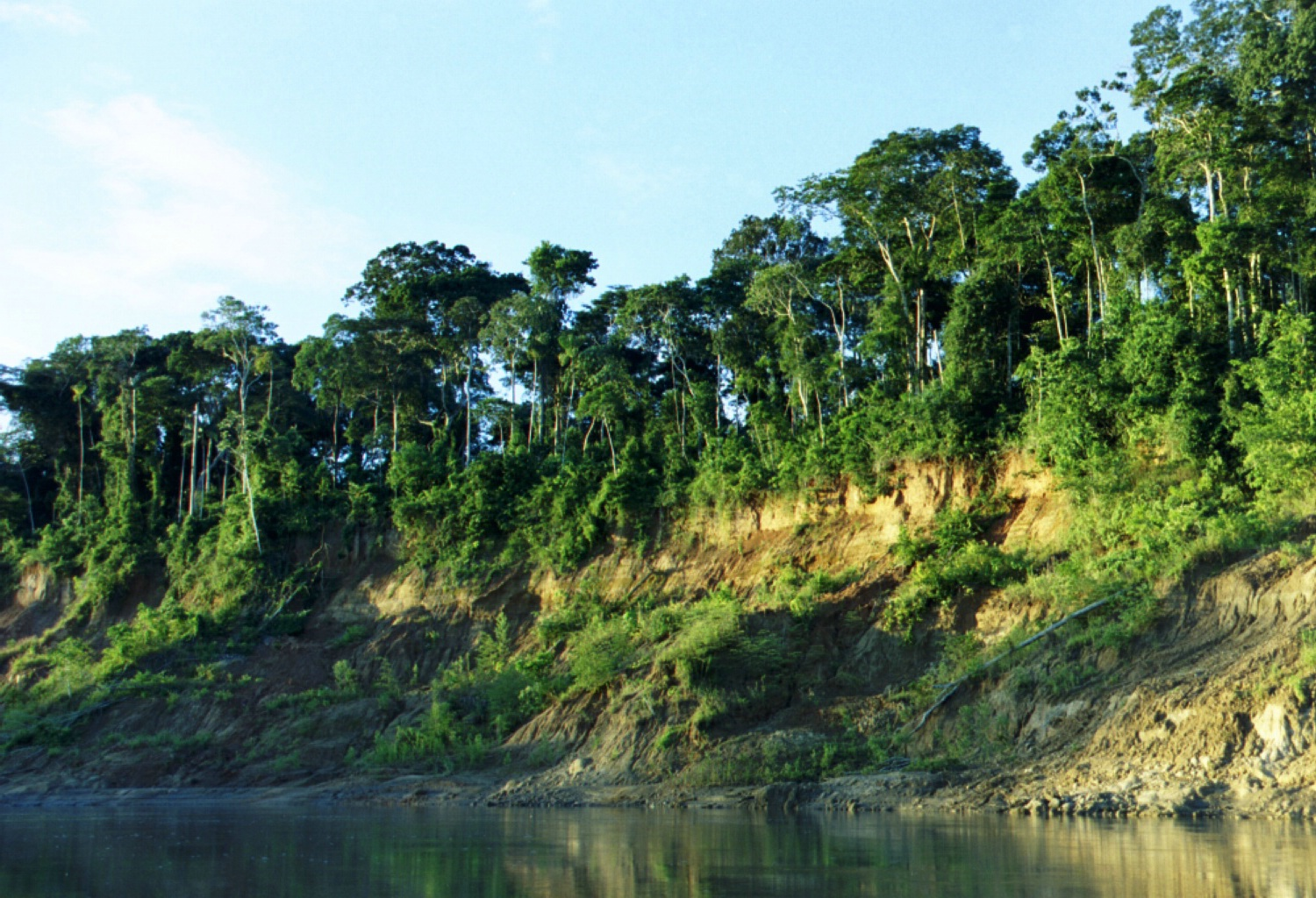 Manu National Park Climate in Manu National Park