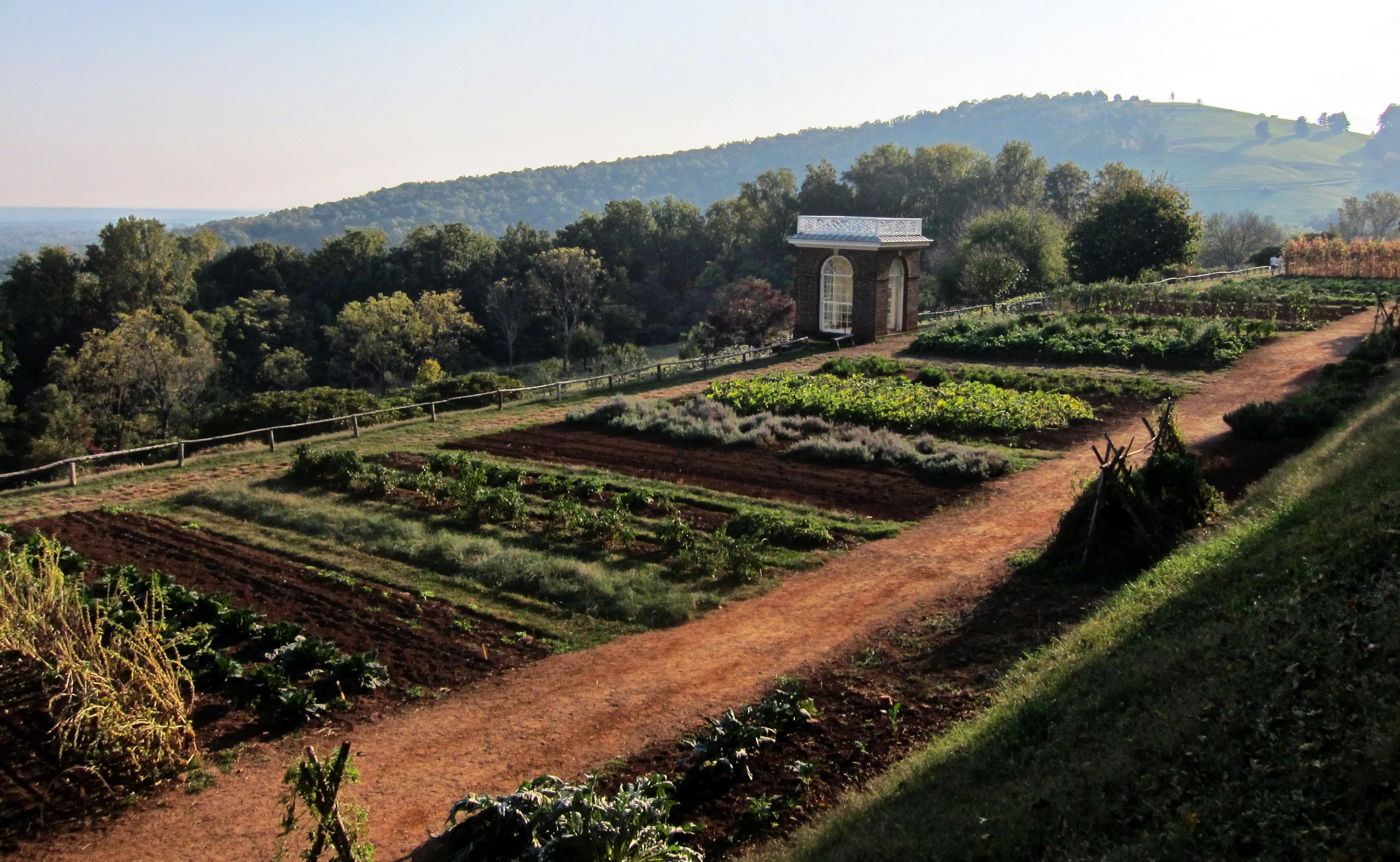 File:Monticello vegetable garden.jpg - Wikimedia Commons