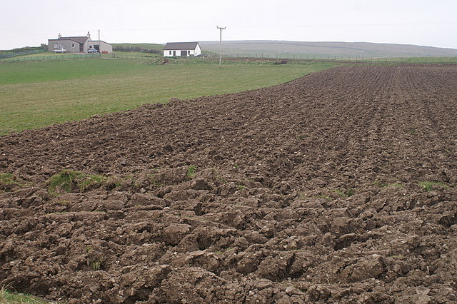 File:Newly ploughed field, Uyeasound - geograph.org.uk - 1272686.jpg