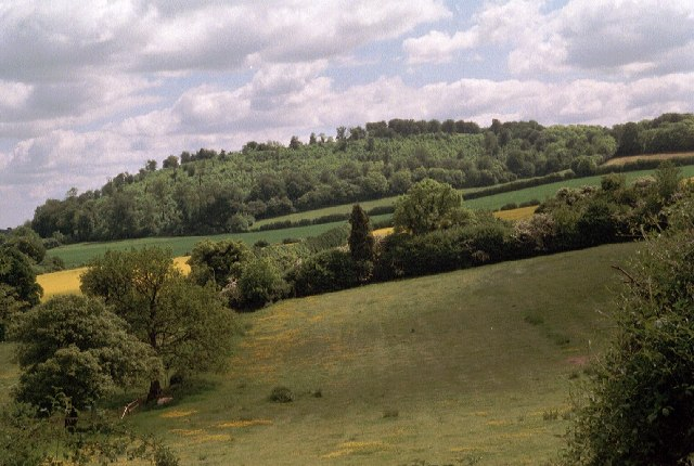 File:Noar Hill from the Hangers' Way path on the south side of Selborne Hill - geograph.org.uk - 68542.jpg
