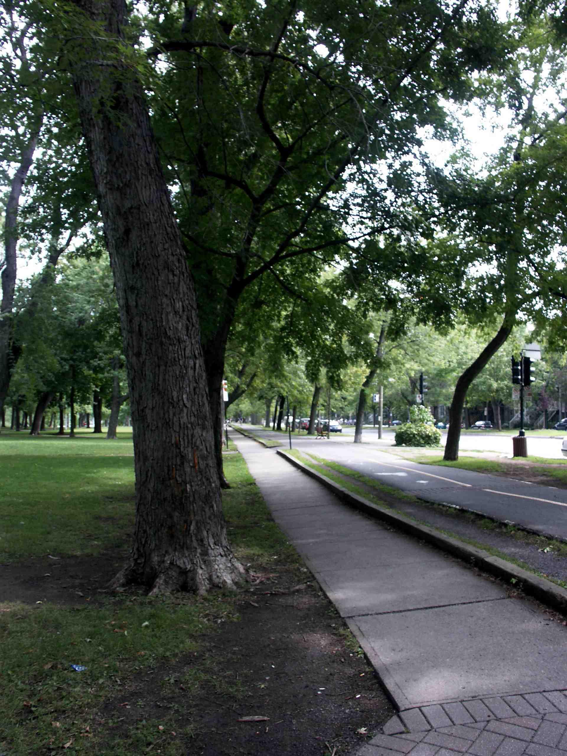 Parc Lafontaine Montreal Parc Lafontaine Montréal