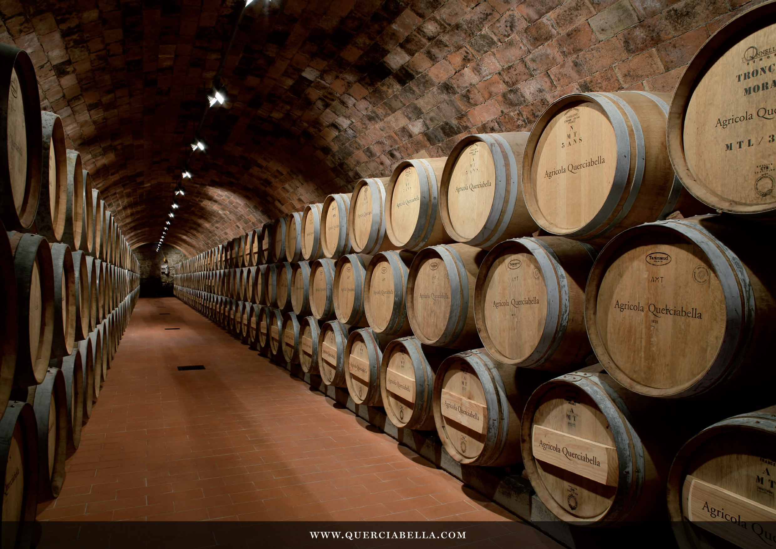 File:Q-06 Barrique cellar at Querciabella, Greve in Chianti.jpg