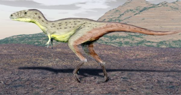 Artist's restoration of the juvenile specimen in life