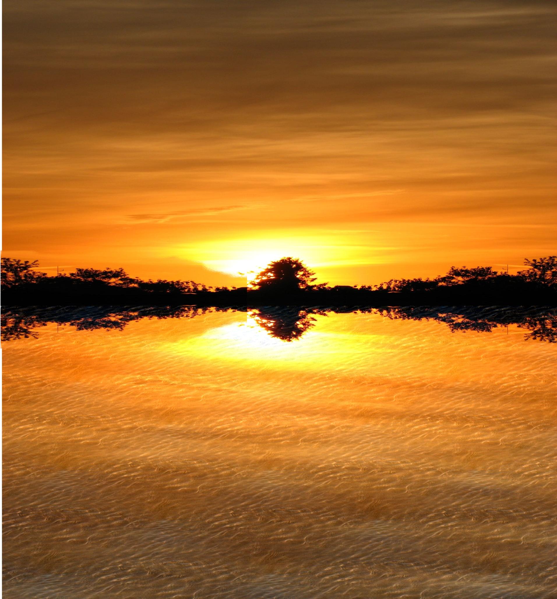 Lake Tanganyika Floating Health Clinic: Employer Identification Number ...
