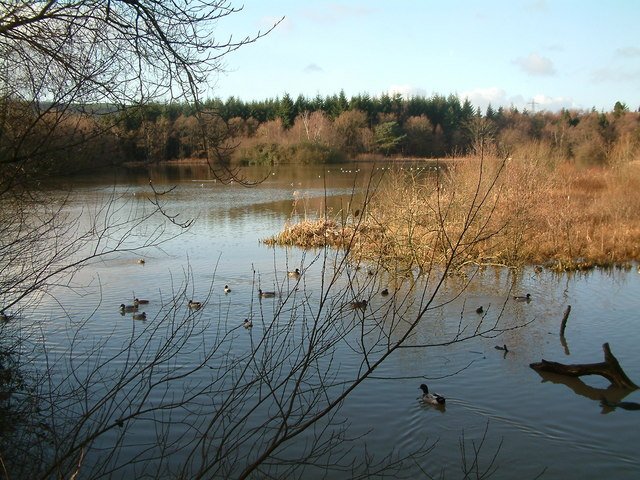 The Lake, Stover Country Park - geograph.org.uk - 409249