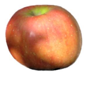 York Imperial Apple cultivar