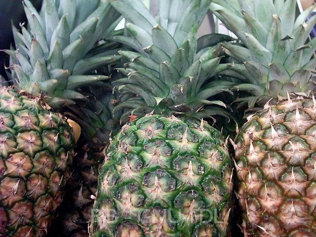 File: 210704-ananas comosus-dreiergruppe marktware-1-640x480.jpg
