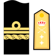 Vicealmirante of the Spanish Navy