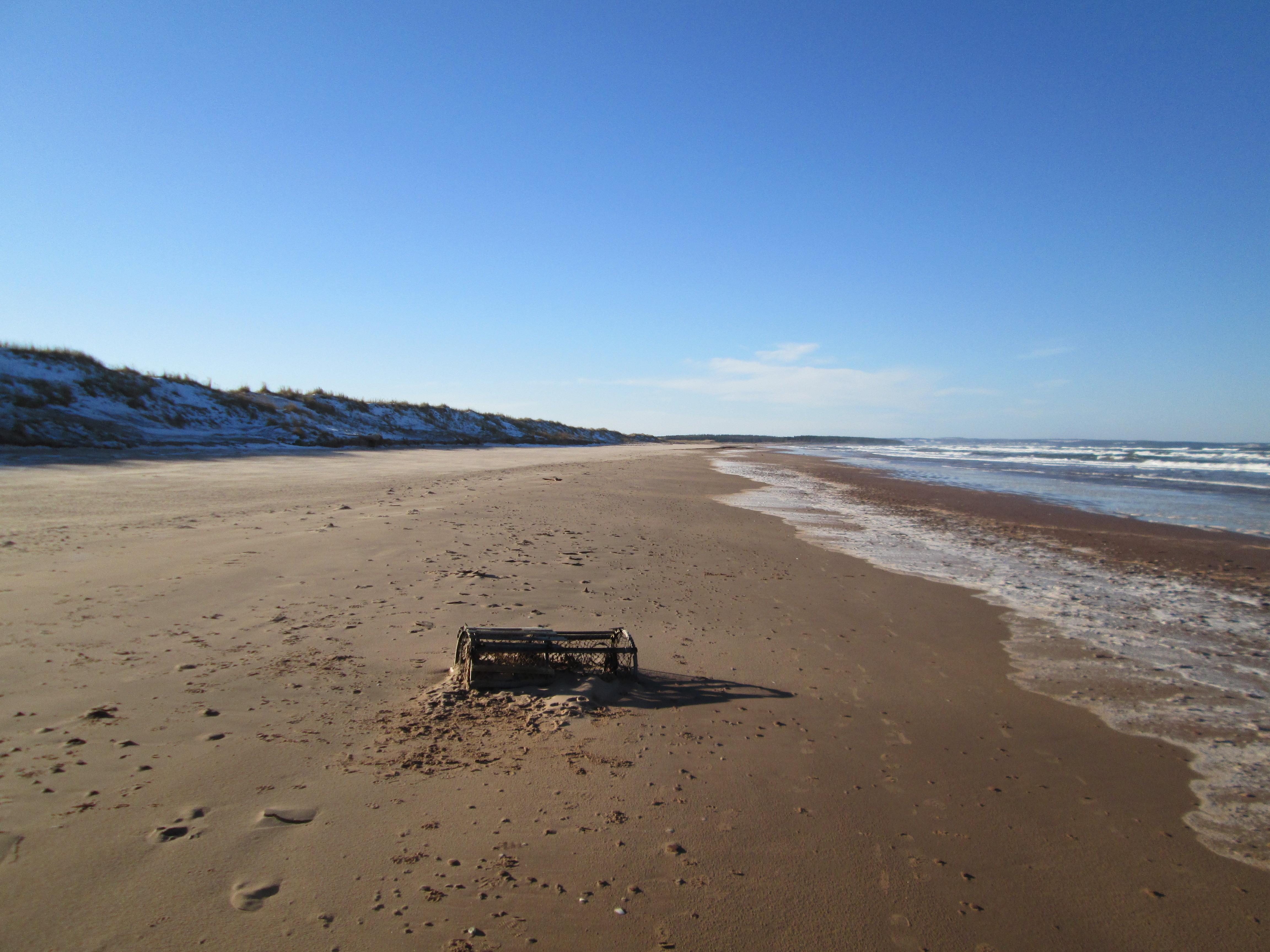 File Brackley Beach Pei National Park 31249226604 Jpg