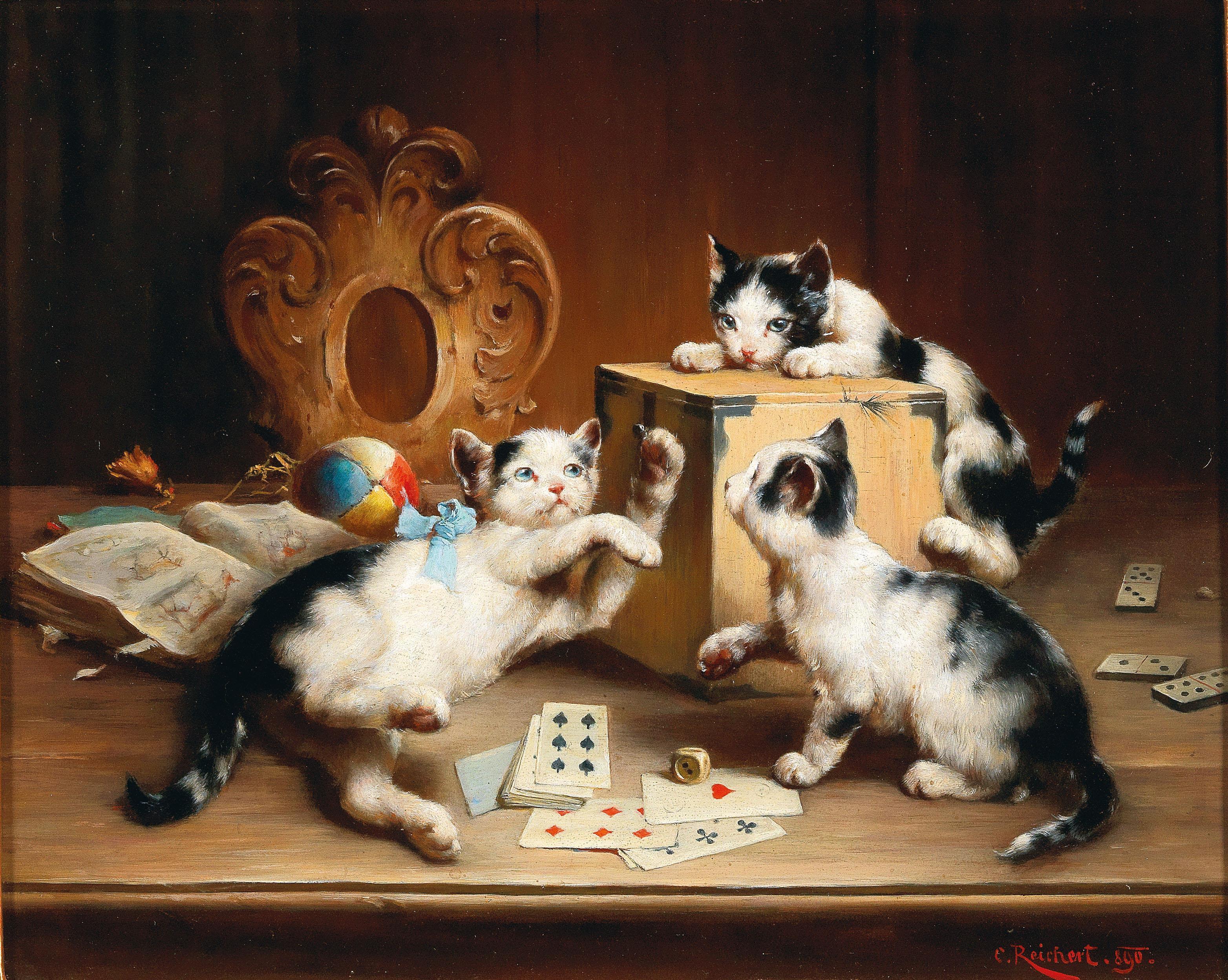 images Kittens Reichert