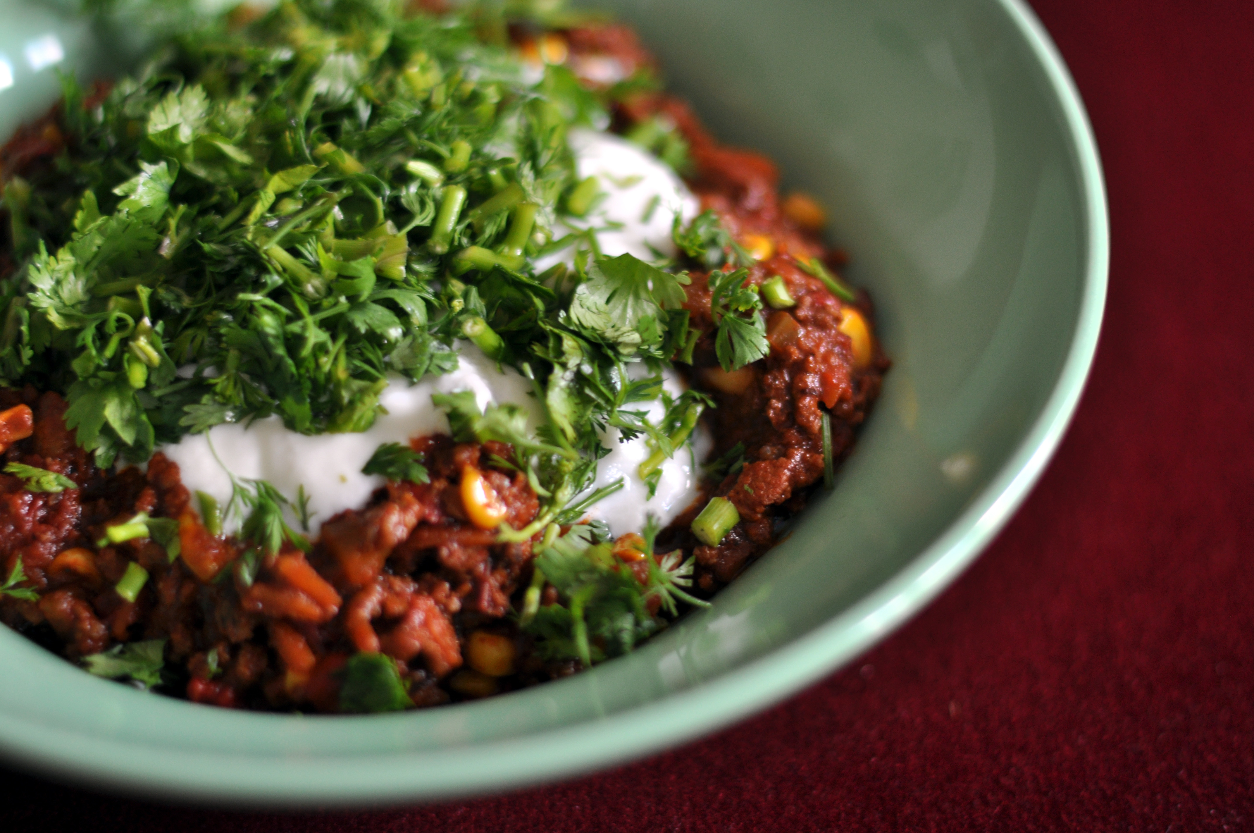 history of chili con carne essay All about the history and culture of chili con carne.