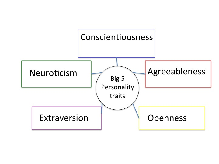 5 personality traits The big five personality traits' first  the big five personality traits & workplace  the videos on studycom accomplish in 5 minutes what would take.