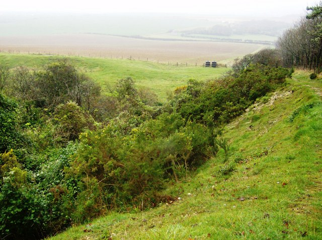 Disused pits below Wellow Down - geograph.org.uk - 606398