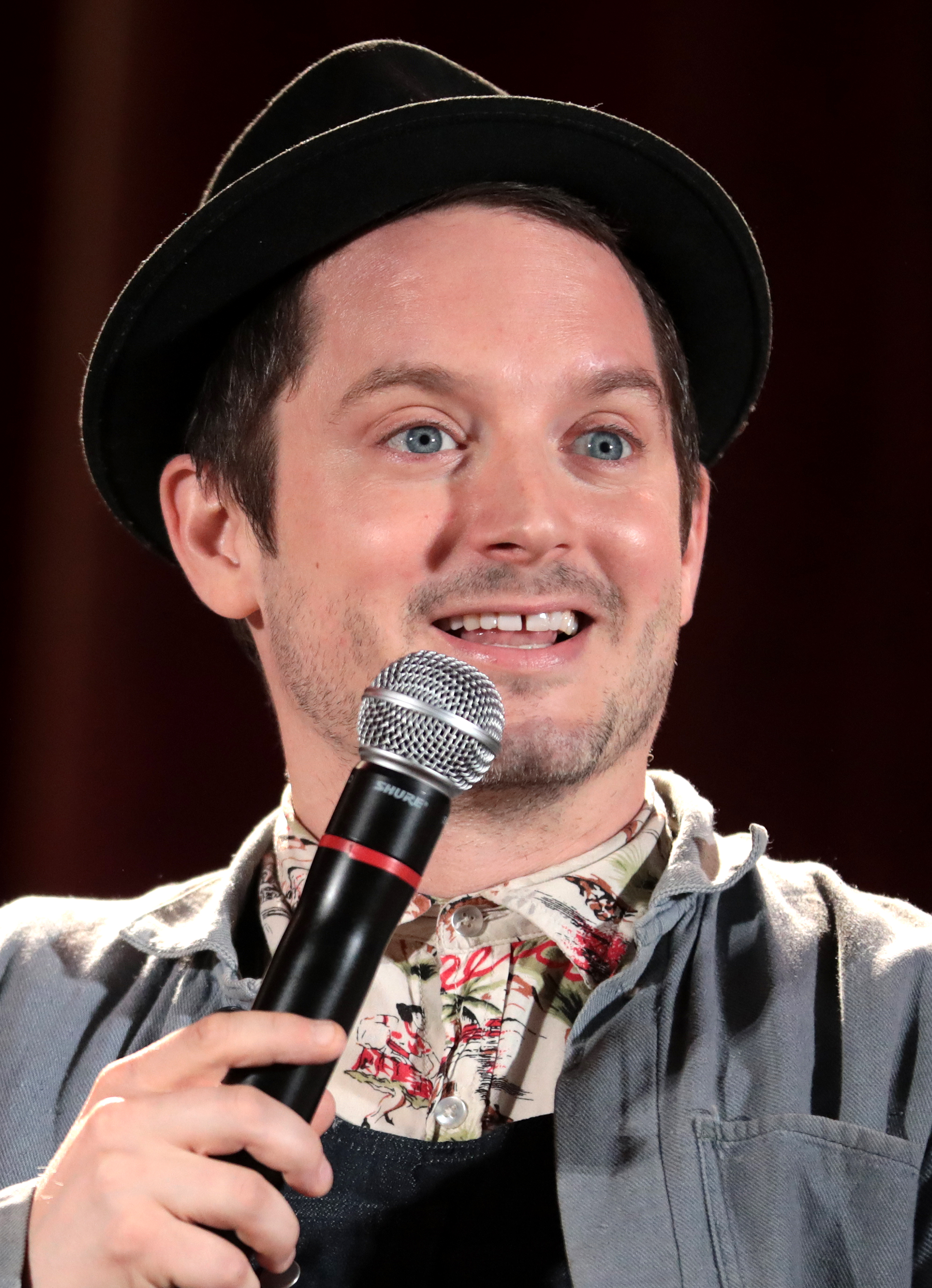 Elijah Wood 2020: dating, net worth, tattoos, smoking ...