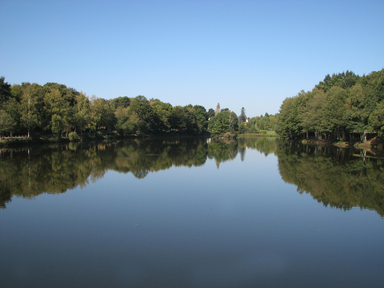 FichierEtang Bois Amour Locminejpg — Wikipéd ~ Bois De L Etang