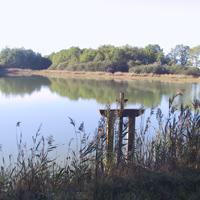 Argent étang datant