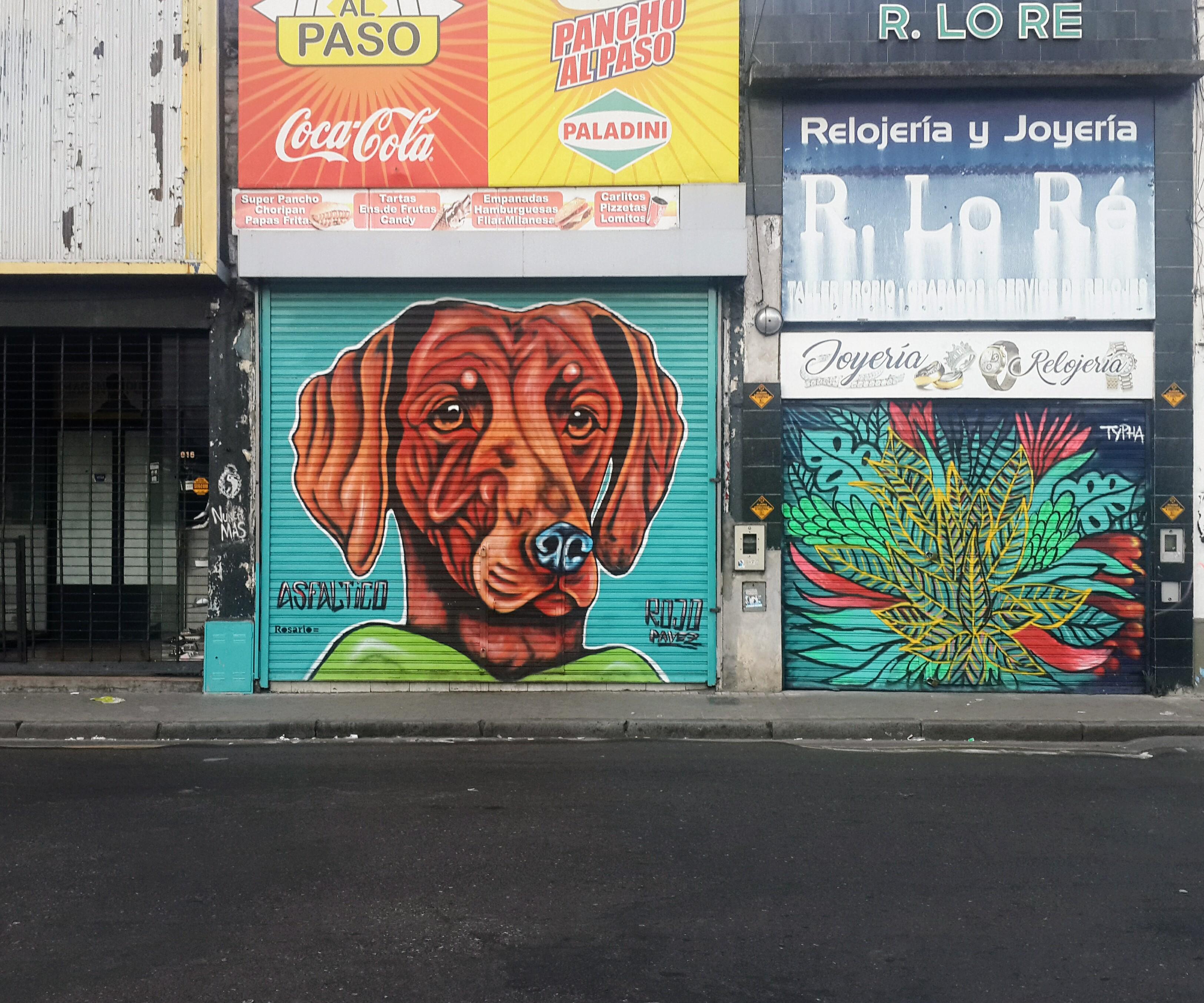 File Graffiti Cabeza Perro En Calle San Luis De Rosario Jpg