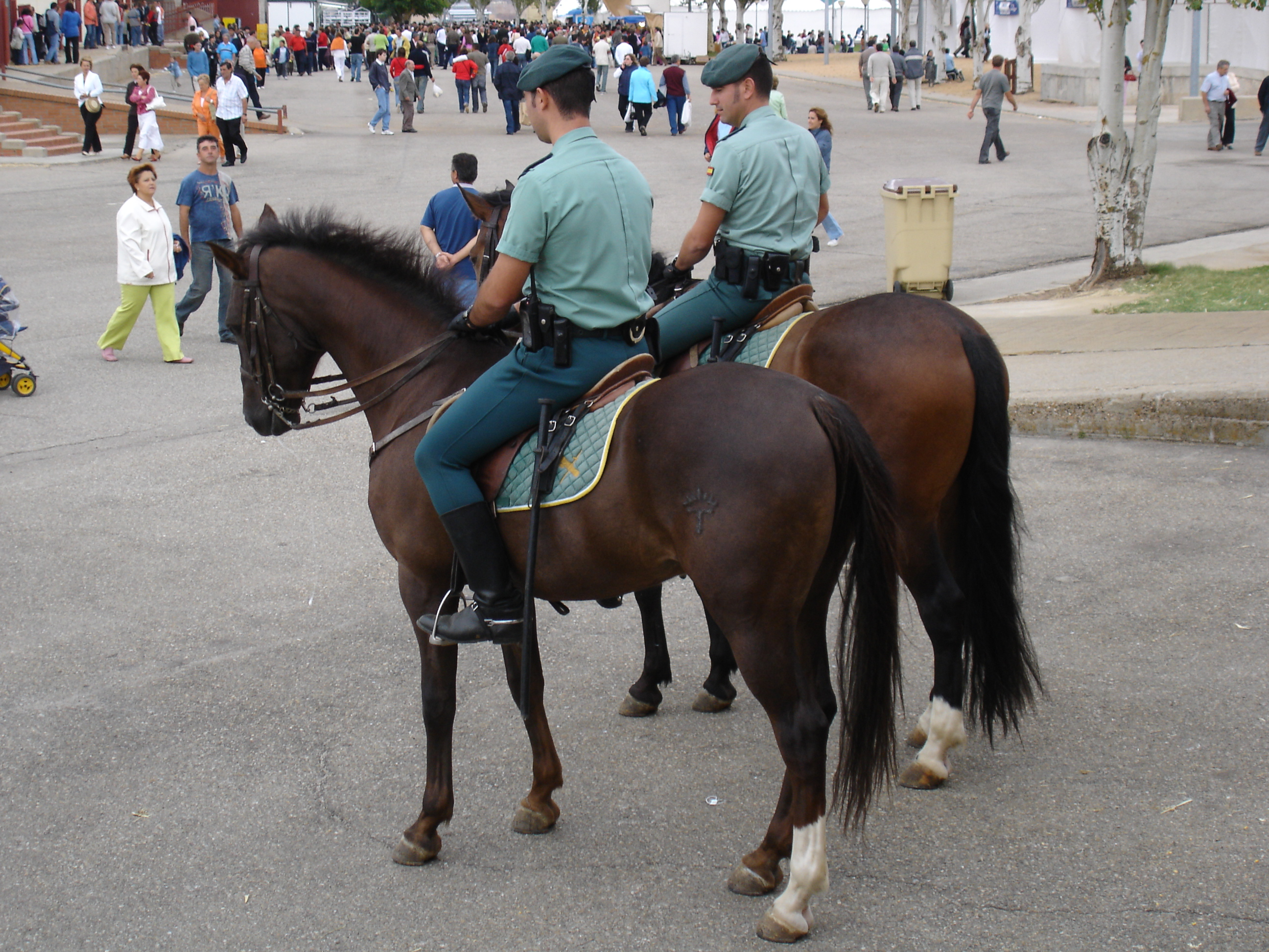 http://upload.wikimedia.org/wikipedia/commons/3/3d/Guardia_Civil_a_caballo.jpg