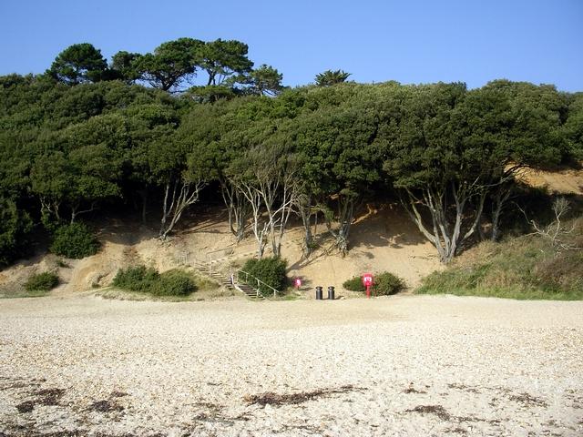 Highcliffe Castle beach - geograph.org.uk - 260957