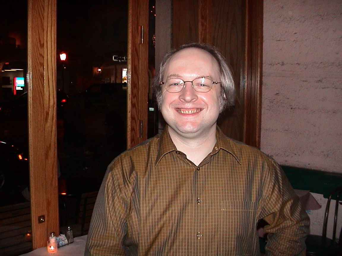 jakob nielsen  usability consultant
