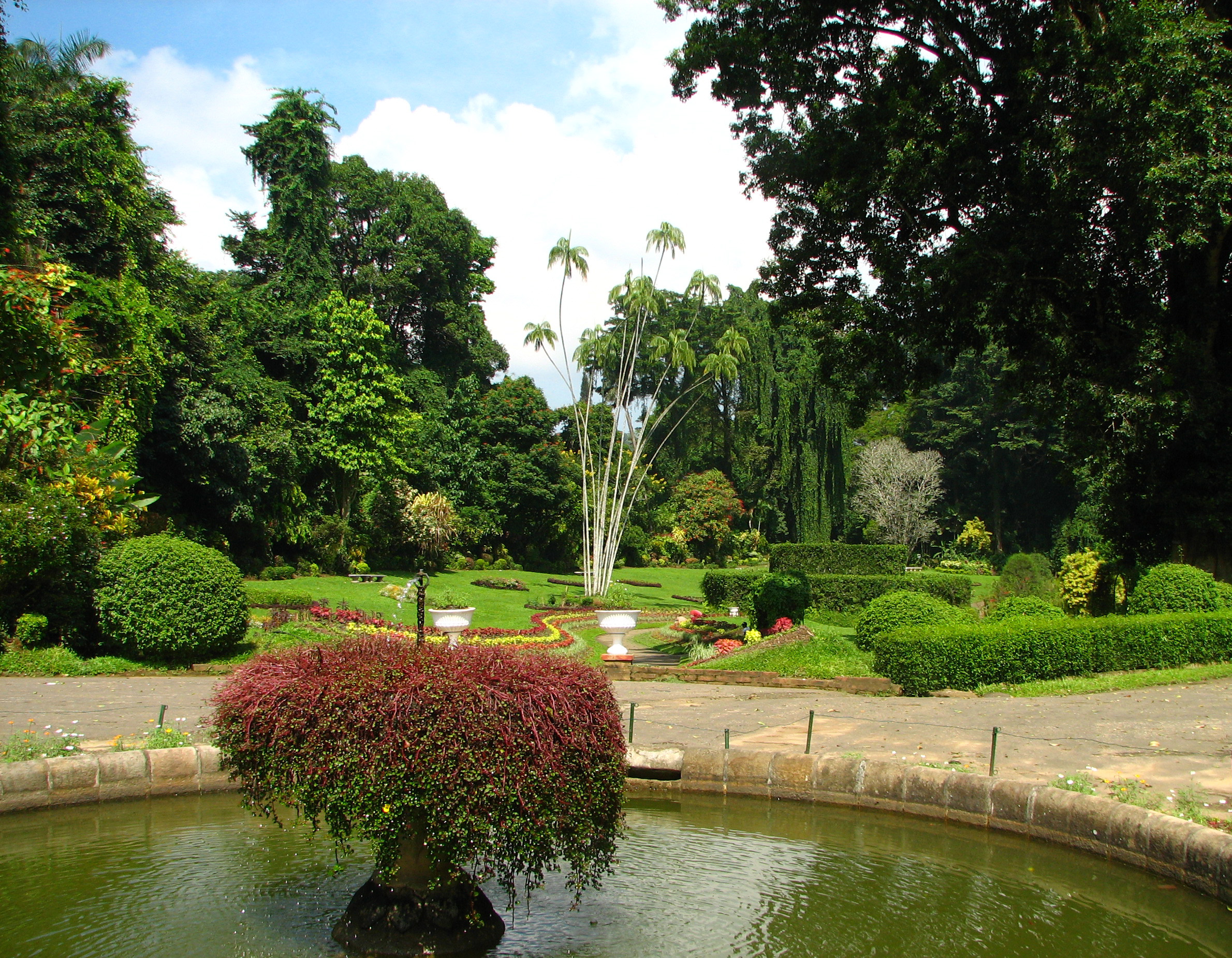 File kandy botanical garden sri wikimedia commons for Sri lankan landscaping plants