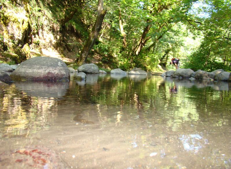 رود لوندویل