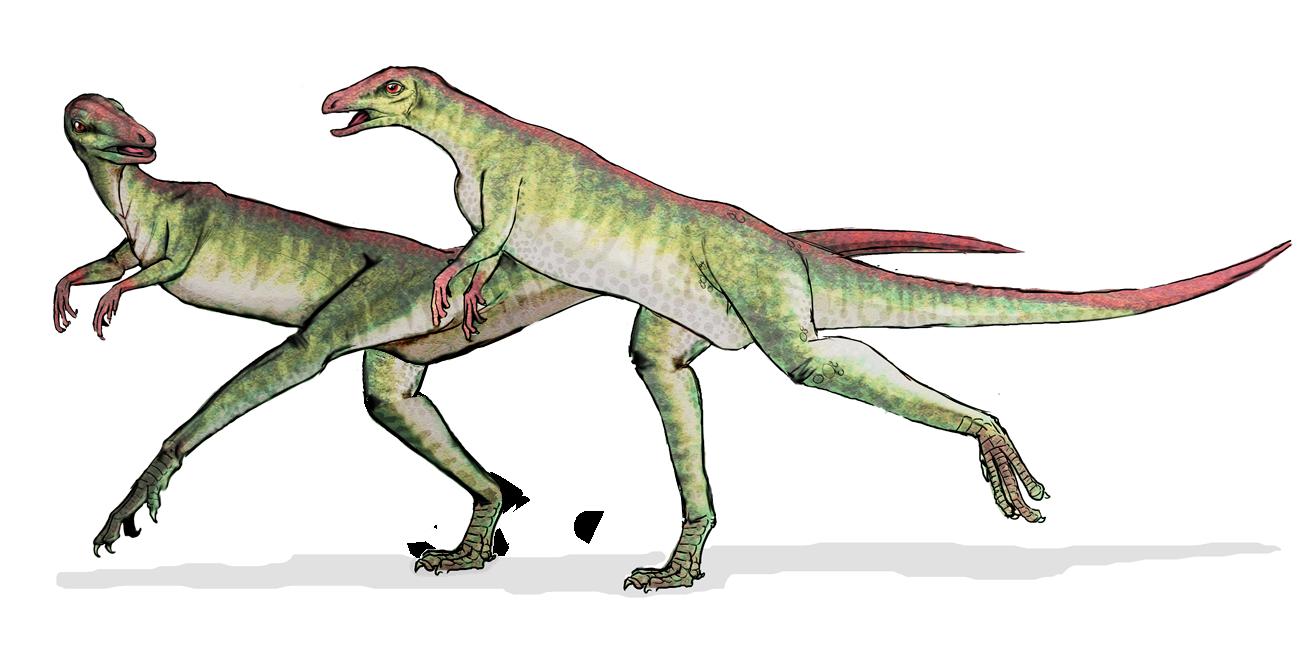 le jeu sans fin.... - Page 37 Lesothosaurus_dinosaur
