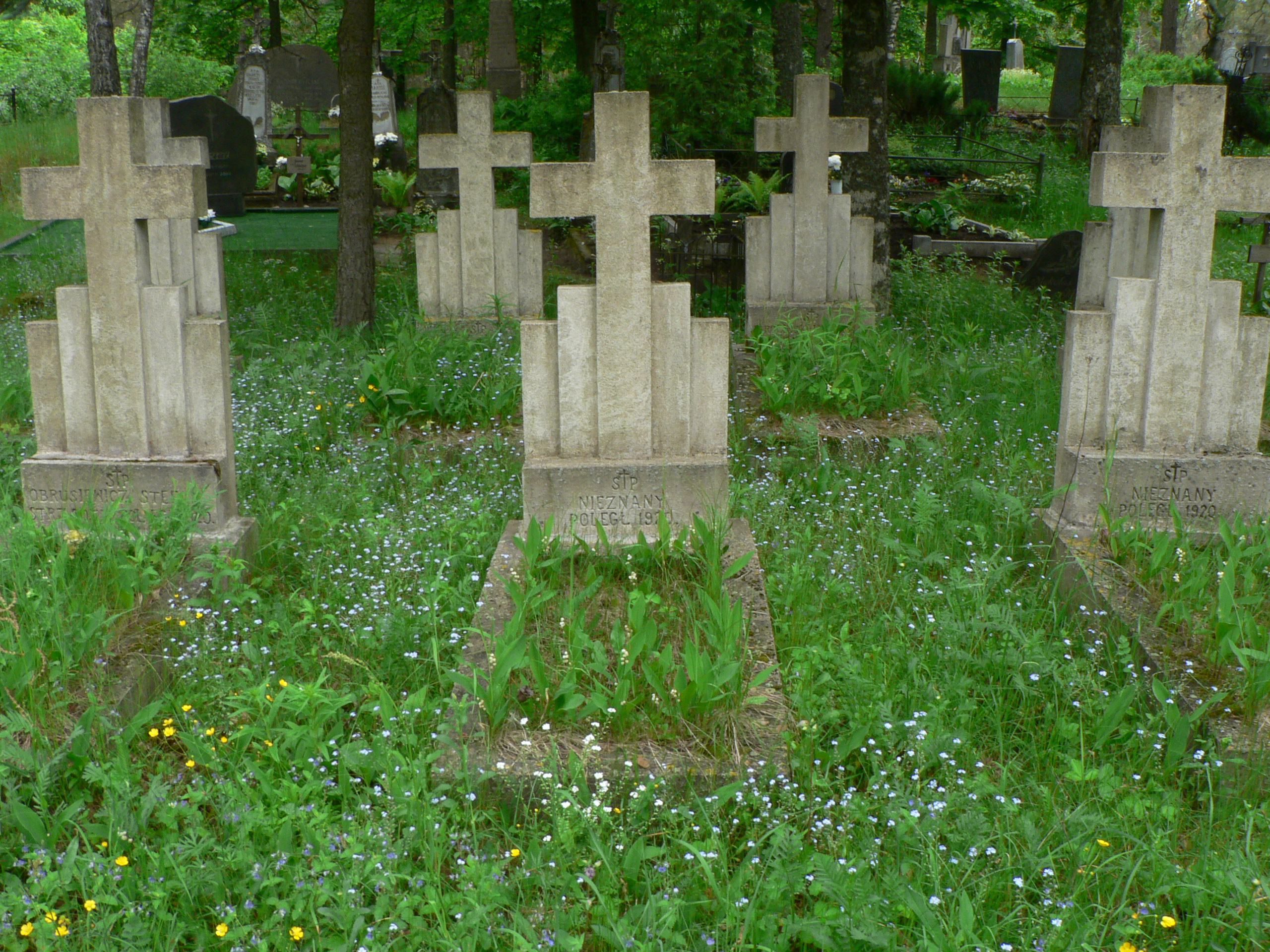 File:Marcinkonys graves.jpg - Wikimedia Commons