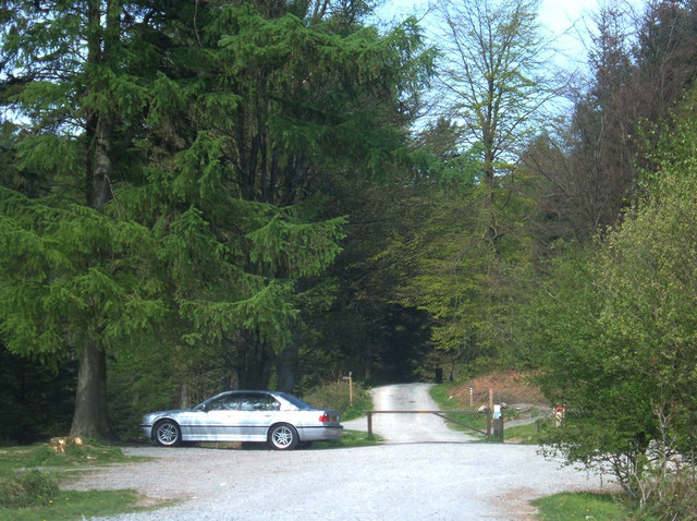 Moor Top Car Park, Grizedale Forest - geograph.org.uk - 419750
