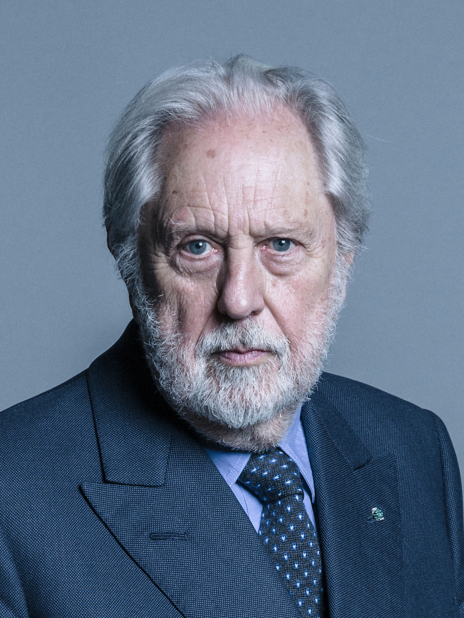 Lord Puttnam's official parliamentary photo