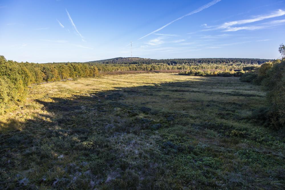 Rotes Moor Rhön Wikipedia