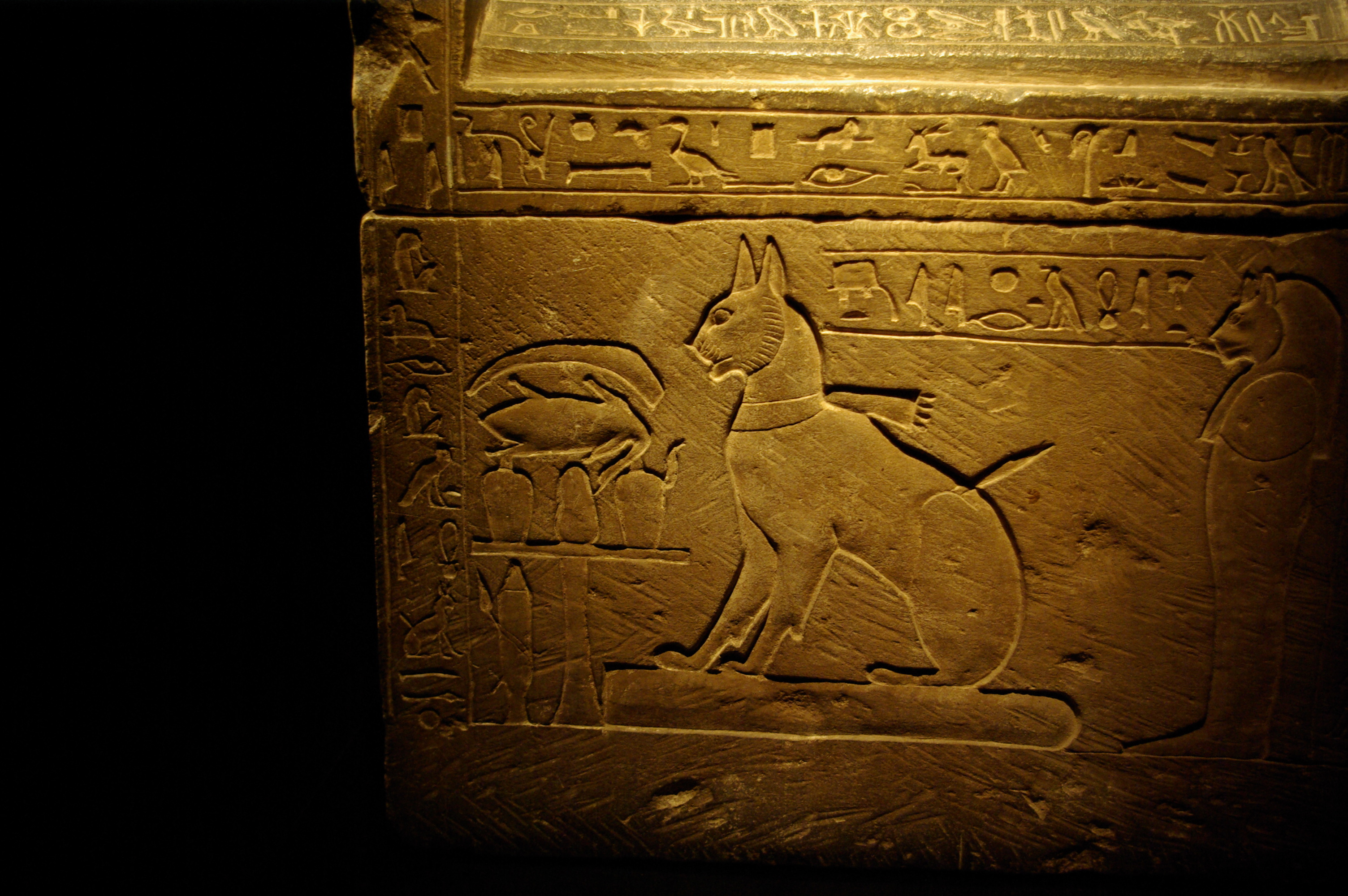 Sarcophagus of Prince Thutmose's cat.