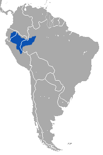 Silvery Woolly Monkey area.png