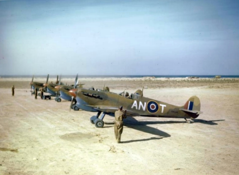 Spitfire Plane Model And Cockpit Problems Documented Bug
