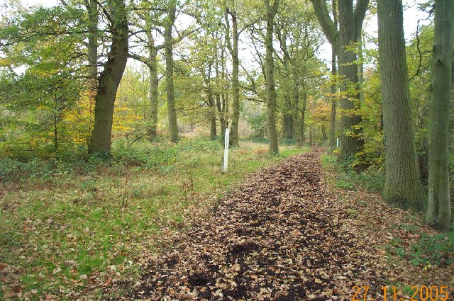 Stanmore Common, Bridleway - geograph.org.uk - 88467