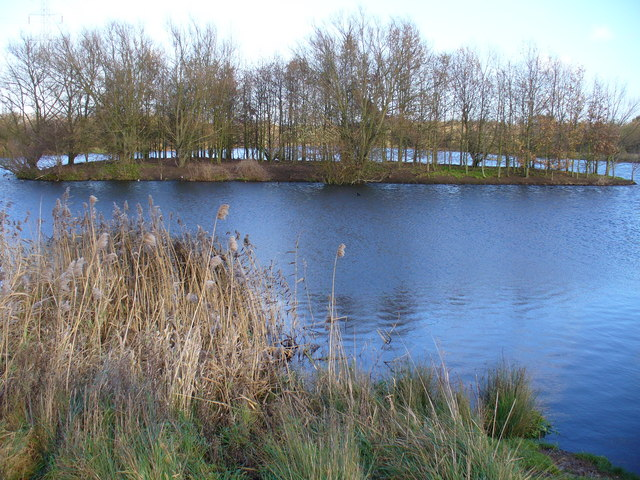 File:The Island, Riverside Park - geograph.org.uk - 288895.jpg