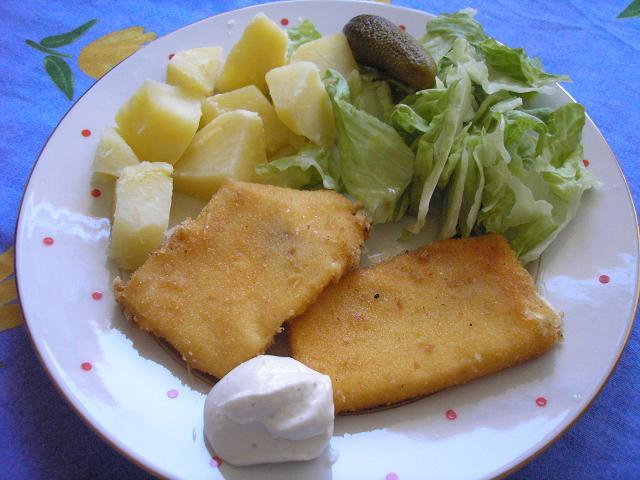 Vyprážaný syr