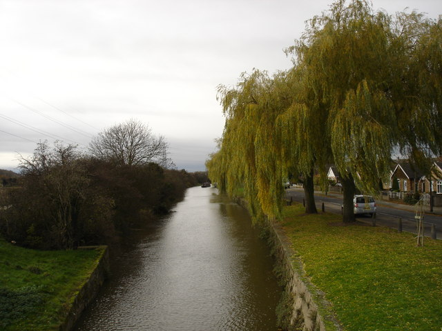 Willows Along the Beeston Canal - geograph.org.uk - 1045775