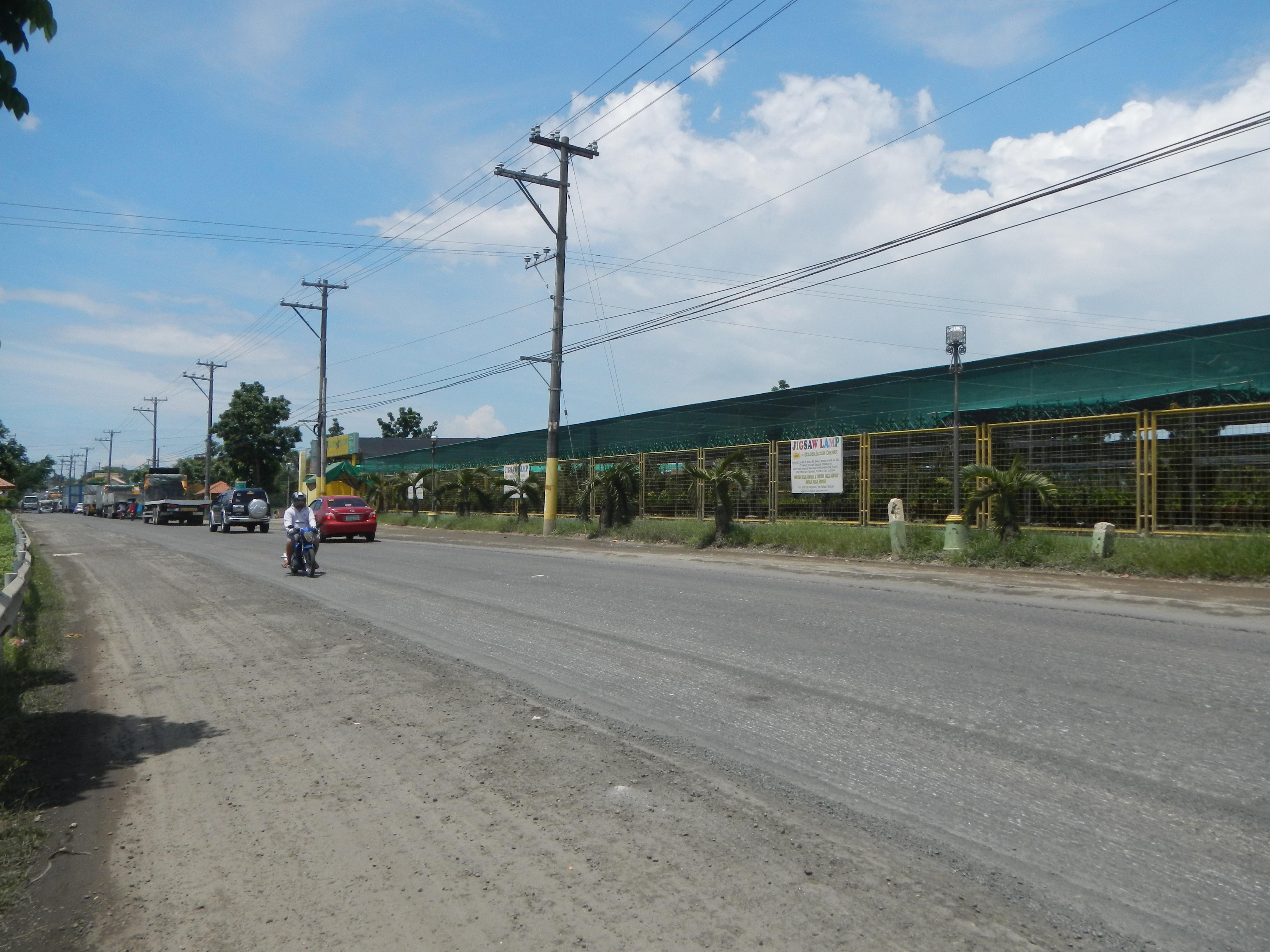 File 09375jfgolden Bloom San Roque Highway San Rafael Bulacanfvf 12