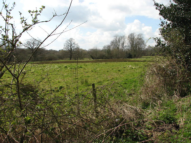 Booton Common - geograph.org.uk - 756000