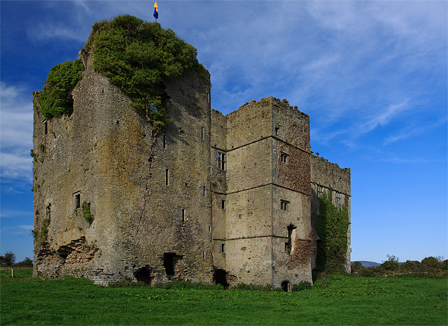 Castles of Munster, Loughmoe, Tipperary - geograph.org.uk - 1542634