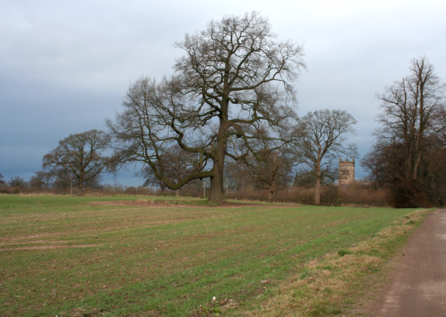 Crewe and Nantwich Circular Walk, outside Acton - geograph.org.uk - 705052