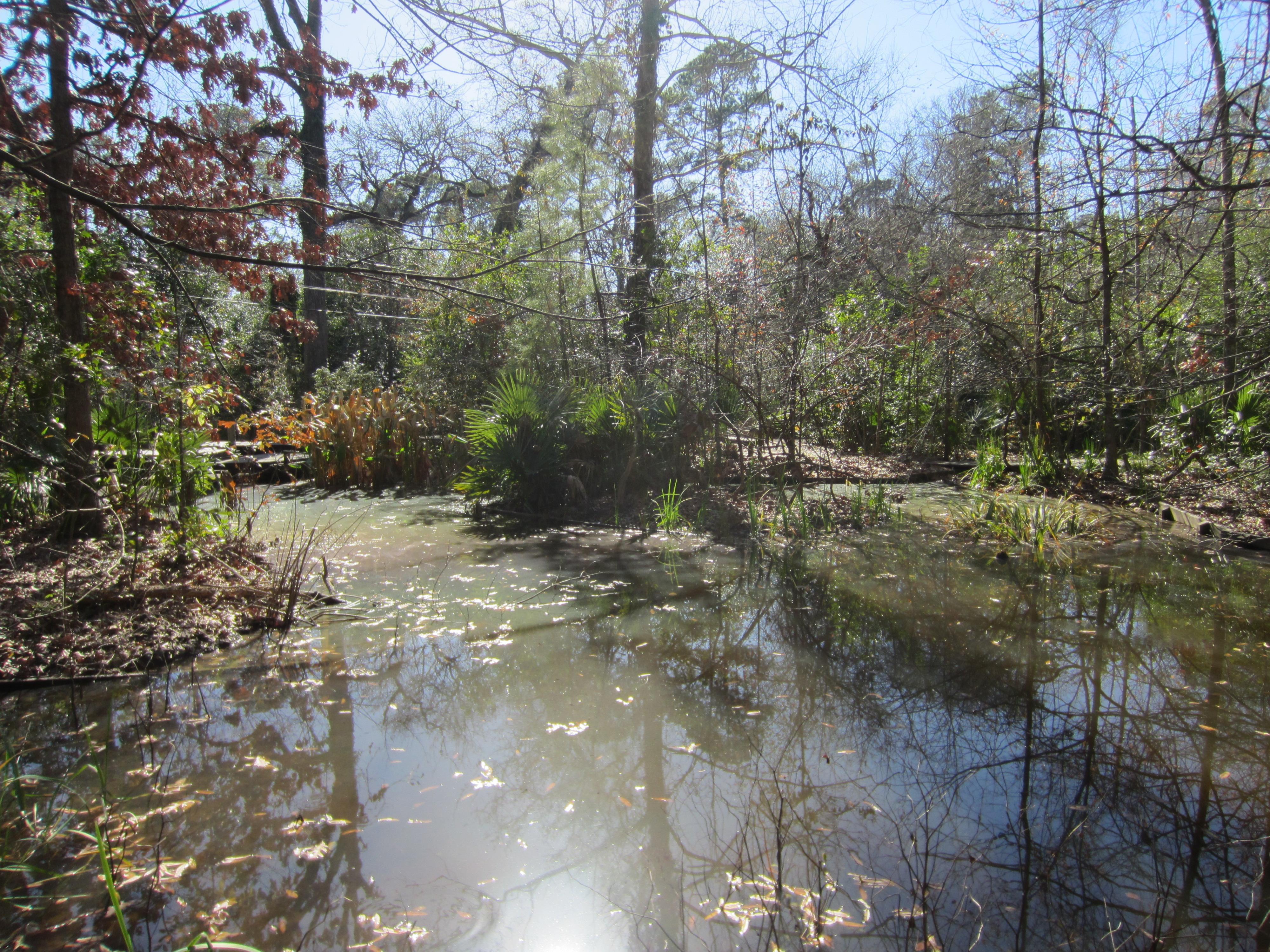 Edith L. Moore Nature Sanctuary Quiz