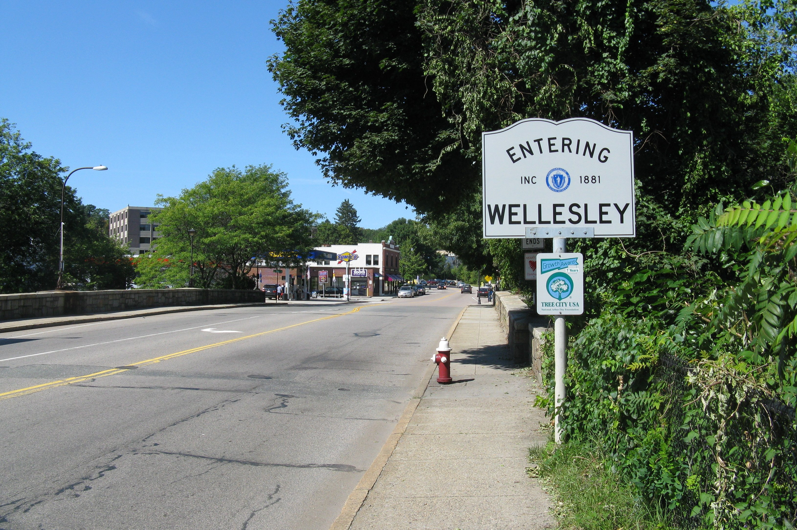Wellesley /wlzli/ is a town in Norfolk County, Massachusetts. It is part of Greater Boston. It has one of the highest median household and family incomes in Massachusetts. There are many shopping options in Wellesley, such as fashion stores, flower shops and jewelers, suggesting that there is.
