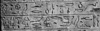 фрагмент стелы №31664 из Field Museum of Natural History (Чикаго)