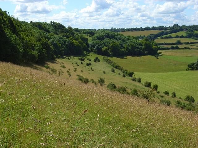 File:Hillside below Bledlow Ridge - geograph.org.uk - 892064.jpg
