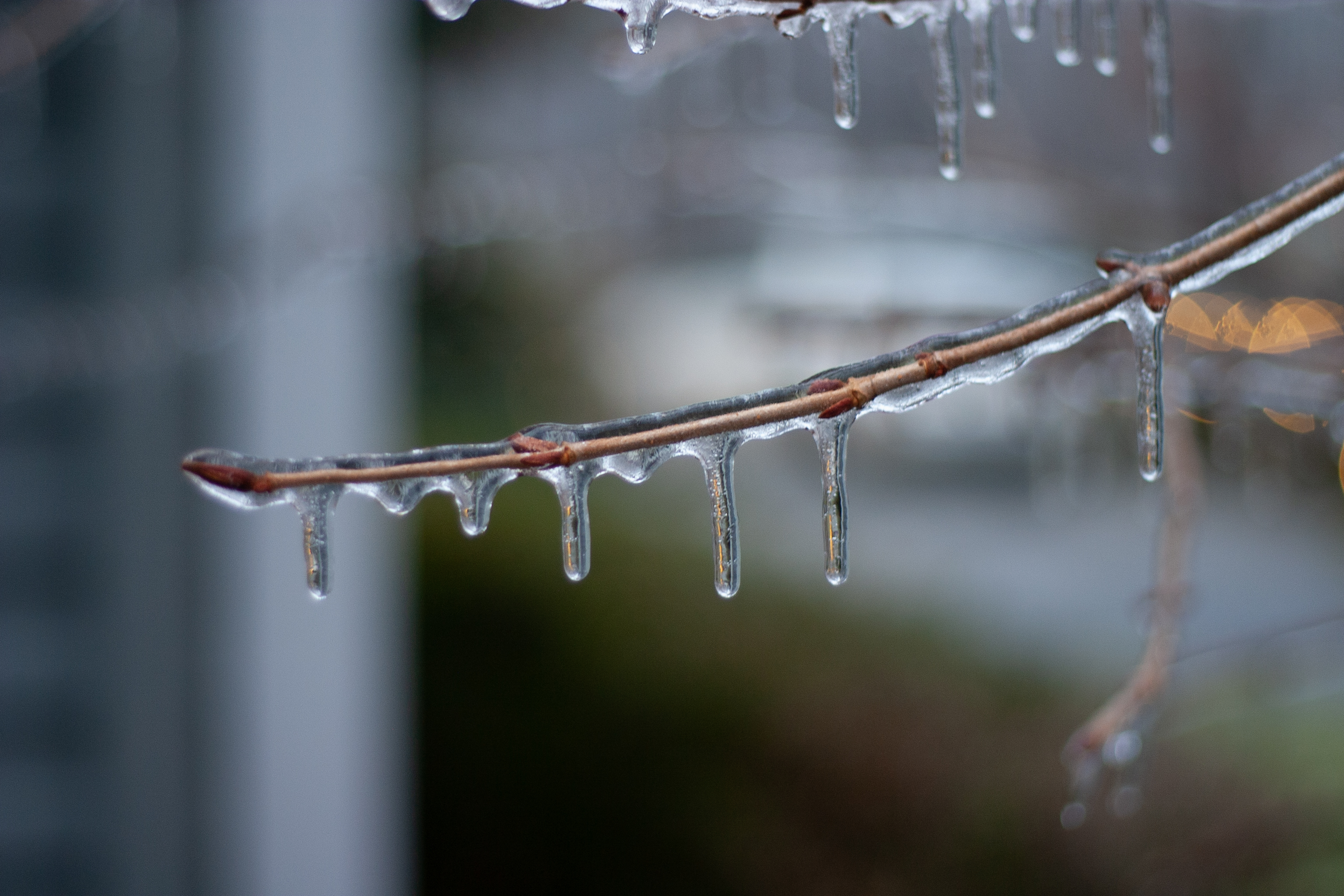 Image result for icicles dripping